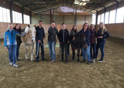 Impulscoaching mit Pferden11