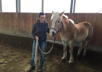 Impulscoaching mit Pferden5